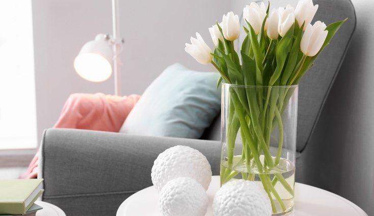 Las tendencias son válidas si estás dispuesto s renovar tu hogar frecuentemente