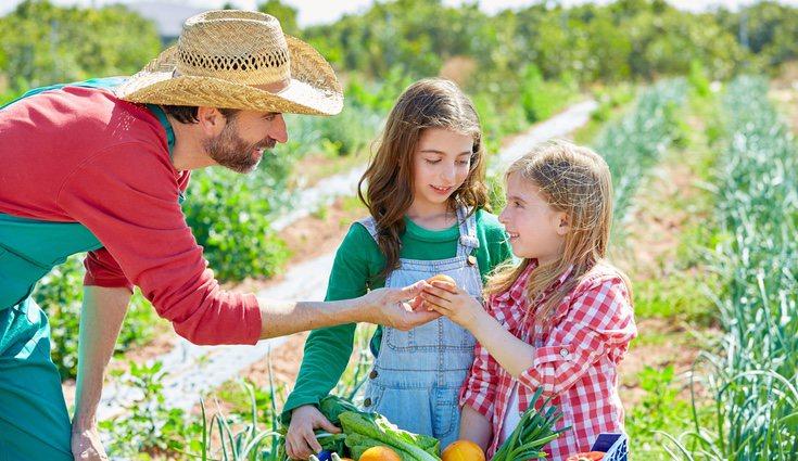 Los productos ecológicos suelen ser buenos a largo plazo, porque no contienen pesticidas que incluso pueden provocar enfermedades crónicas