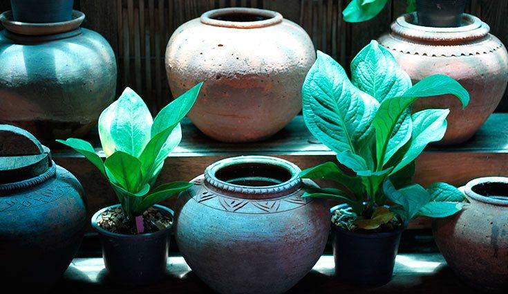El mejor material para almacenar el agua de la lluvia es la cerámica o la arcilla