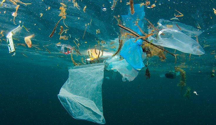 Para que el océano no se convierta en un gran mar de plástico, se debe comenzar a reducir, reutilizar y reciclar.