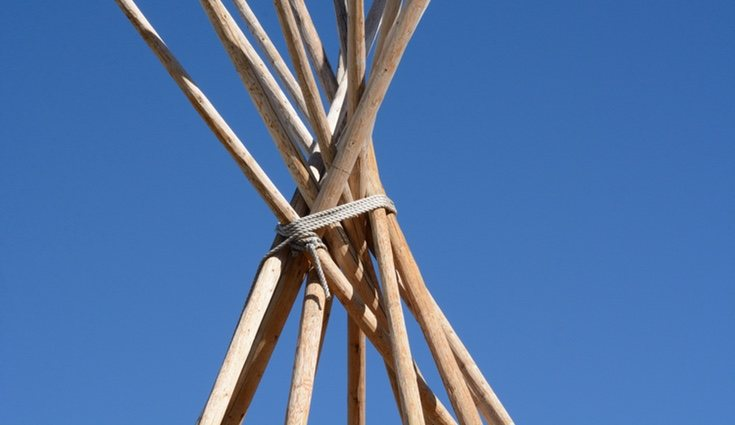Selecciona bambú seco para crear tu estructura