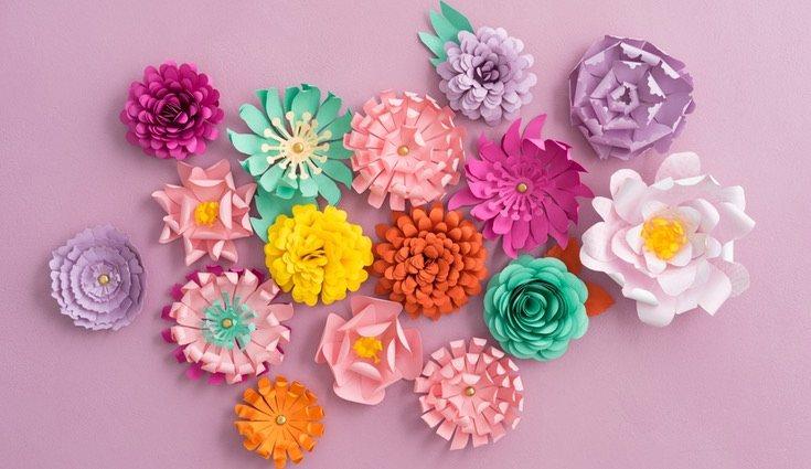 Incorpora las flores para completar el diseño
