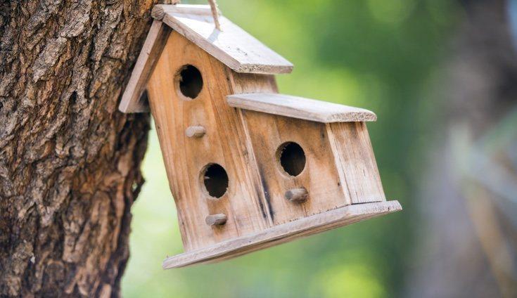 Una bonita casa para los pájaros