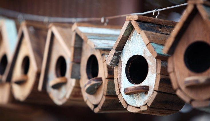 Puedes decorar las casitas de pájaros a tu gusto, ya sea con un poco de pintura o usando barniz