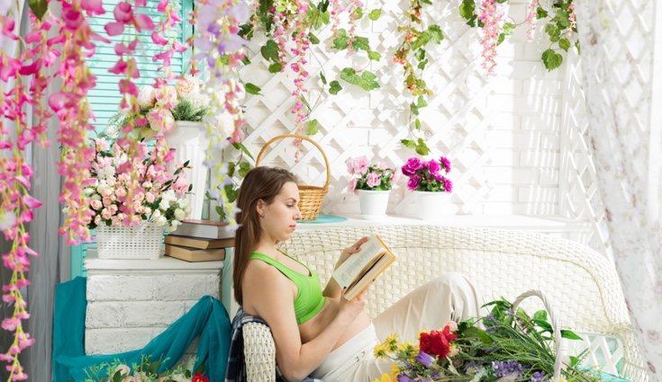 Las plantas trepadoras darán mucha vida a tu casa