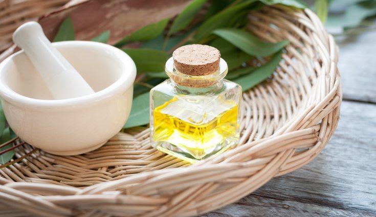 El aceite de eucalipto es uno de los trucos más antiguos