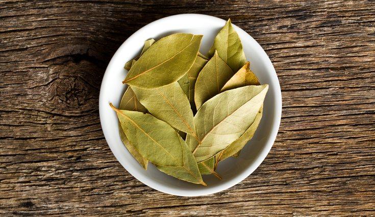 Las hojas basta con colocarlas en diferentes partes de la casa