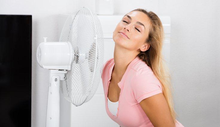 Las corrientes de aire son muy molestas para los insectos