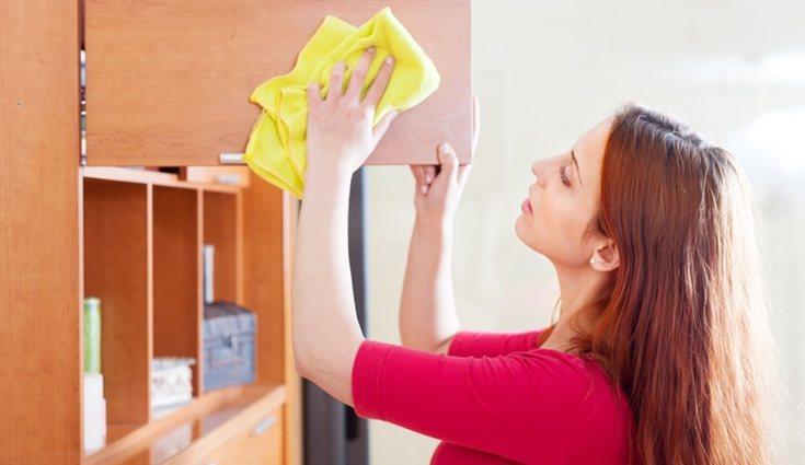 La carcoma trae consigo una plaga que puede afectar perjudicialmente al inmobiliario