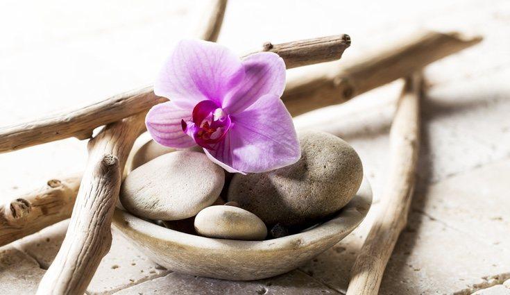 Los elementos naturales ayudarán a conseguir el feng shui en el cuarto de baño
