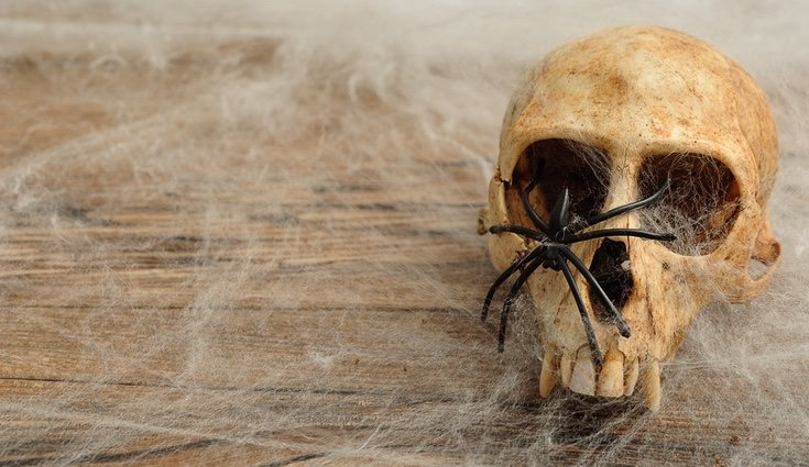 Las tela arañas son muy necesarias en estas fechas, para dar un toque olvidado