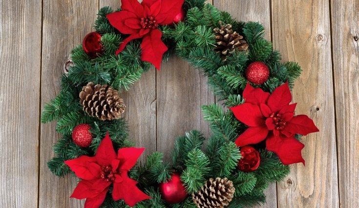 La flor de pascua puede servir como elemento decorativo durante la navidad