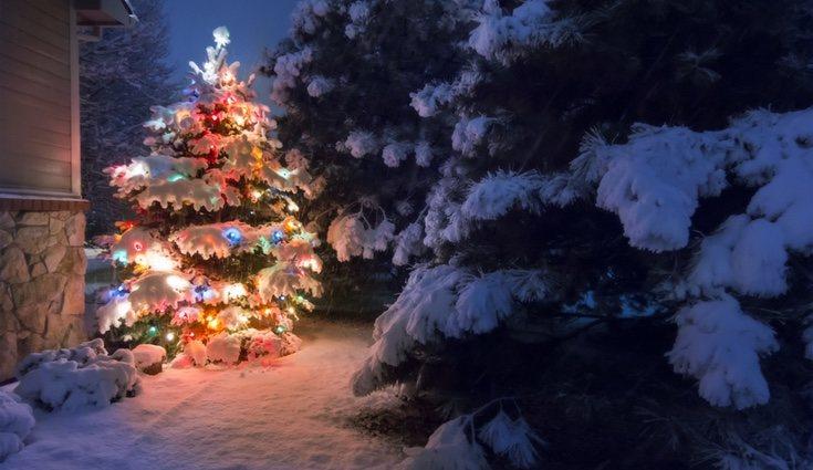 Esta época del año se caracteriza por su decoración en los hogares