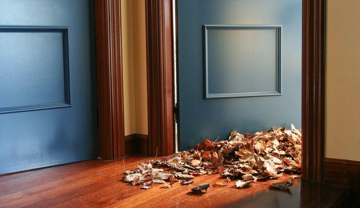 Para saber cómo limpiar tu tarima debes conocer los diferentes tipos que existen