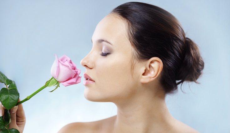 El olor de una rosa es uno de los más embriagadores