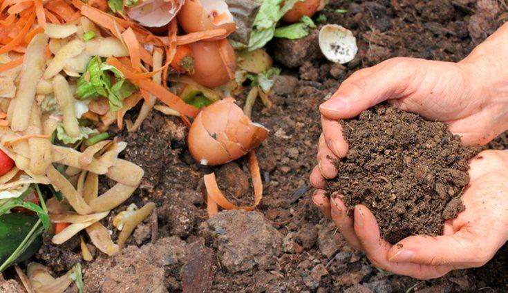 El compost casero es muy beneficioso para el medio ambiente