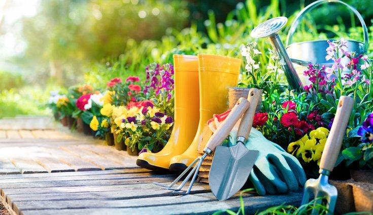Estos instrumentos son esenciales para preparar tu jardín