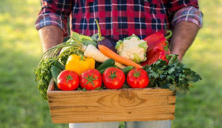 Cultivando tus propios productos en casa no solo ahorras dinero sino también ayudas al medio ambiente