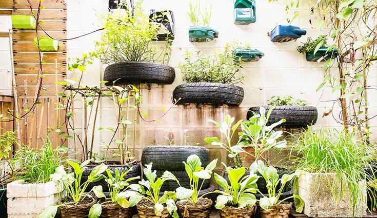 Ha surgido un fenómeno muy popular en los últimos años conocido como los 'huertos urbanos'