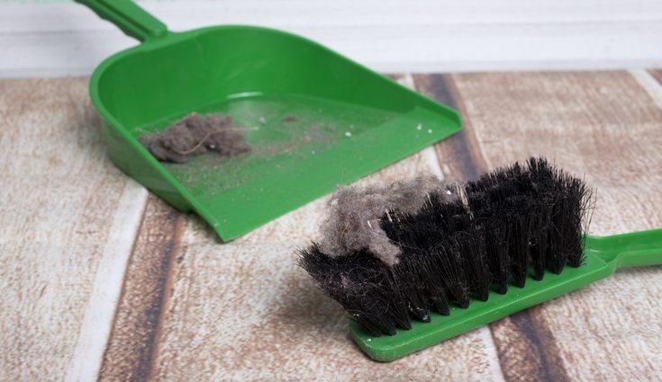 Es importante llevar una limpieza regular para mantener el hogar con el menor número de ácaros