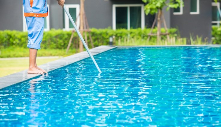 Lo ideal es disponer de una red de piscina para retirar la suciedad del agua