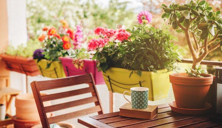 El primer paso para acondicionar tu terraza es decidir el material del suelo que la cubrirá