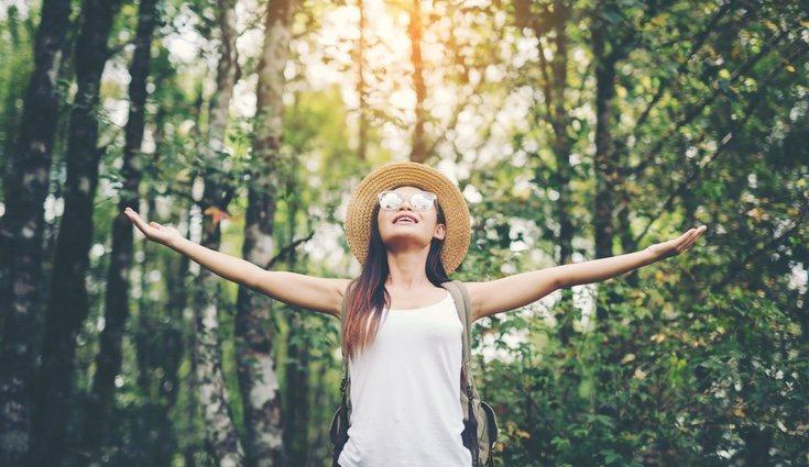 Está demostrado que las personas que están en contacto con las plantas se sienten más renovadas