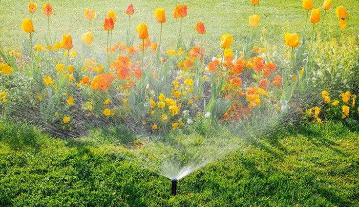 El riego automático es una buena solución para aquellas zonas de jardín más extensas