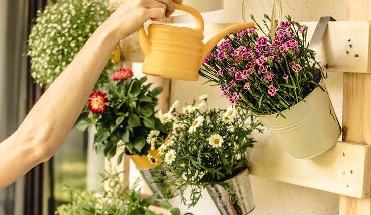 Con las plantas artificiales te ahorrarás regarlas todos los días