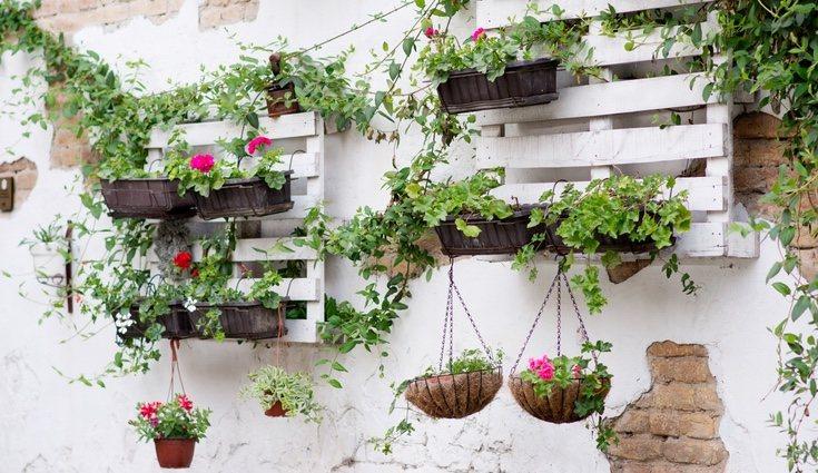También se podrá usar como estantería </p><p>para colgar las plantas