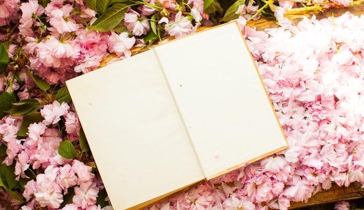 La naturaleza oriental está basada en plantas delicadas como las orquídeas o las flores de cerezo o almendro