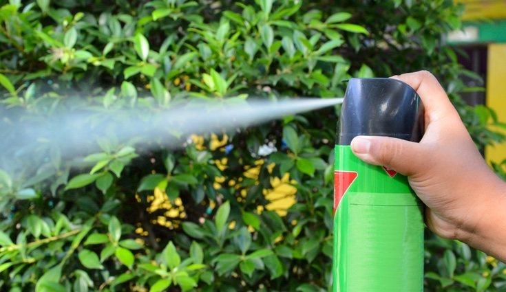 La eficacia de los insecticidas si que está demostrada
