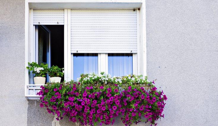 Si dejas las persianas subidas parecerá que hay alguien viviendo en el hogar