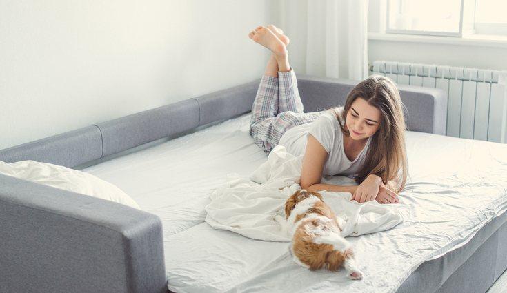 Los sofás cama es uno de los muebles que mejor viene a la hora de tener invitados